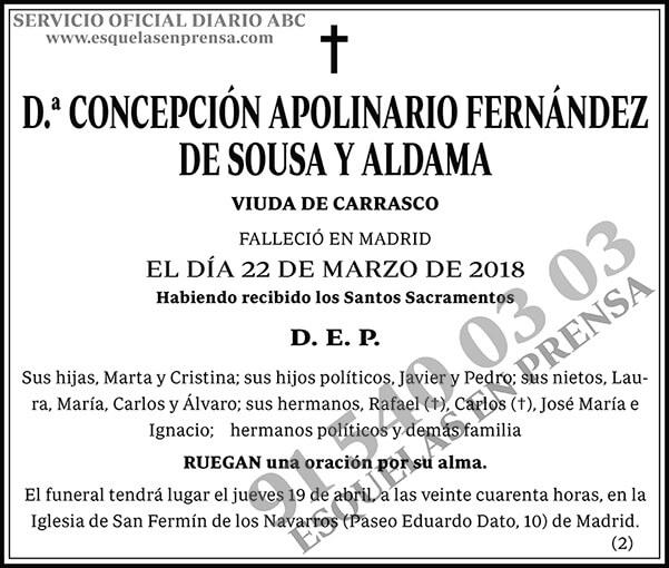 Concepción Apolinario Fernández de Sousa y Aldama